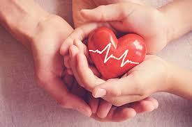 Cardio Nrj - como aplicar - preço - capsule