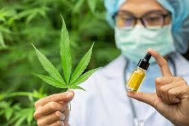 Cannabis oil - pomada - onde comprar - farmacia